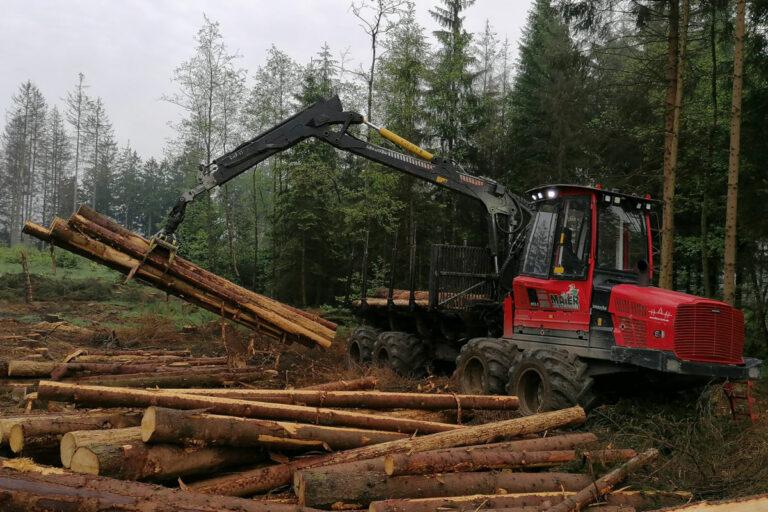 Havester, der Holzstämme greift