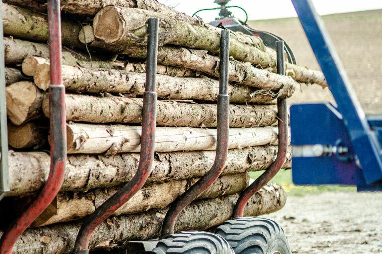 Holzstämme auf einem Rückewagen
