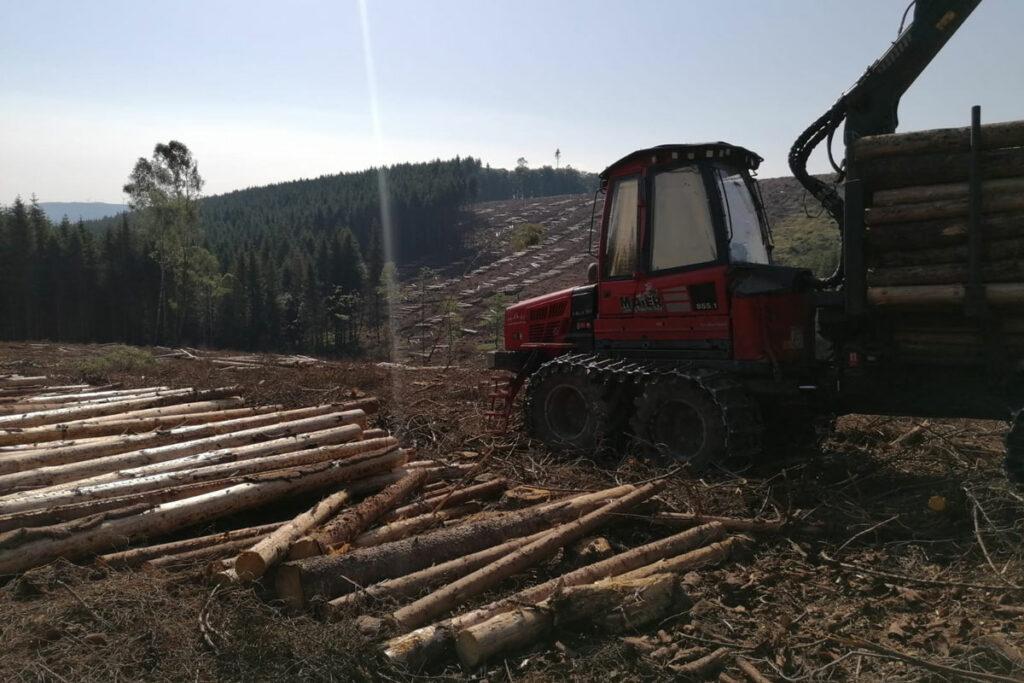 Rückewagen im Wald