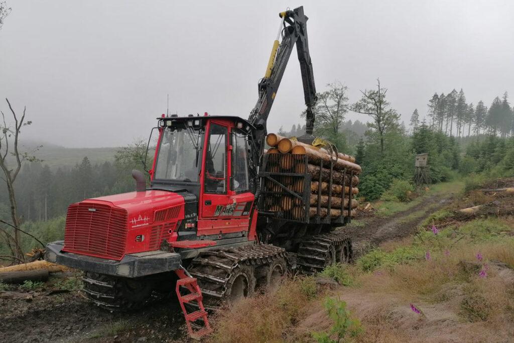 Harvester, der vielen Baumstämme transportiert